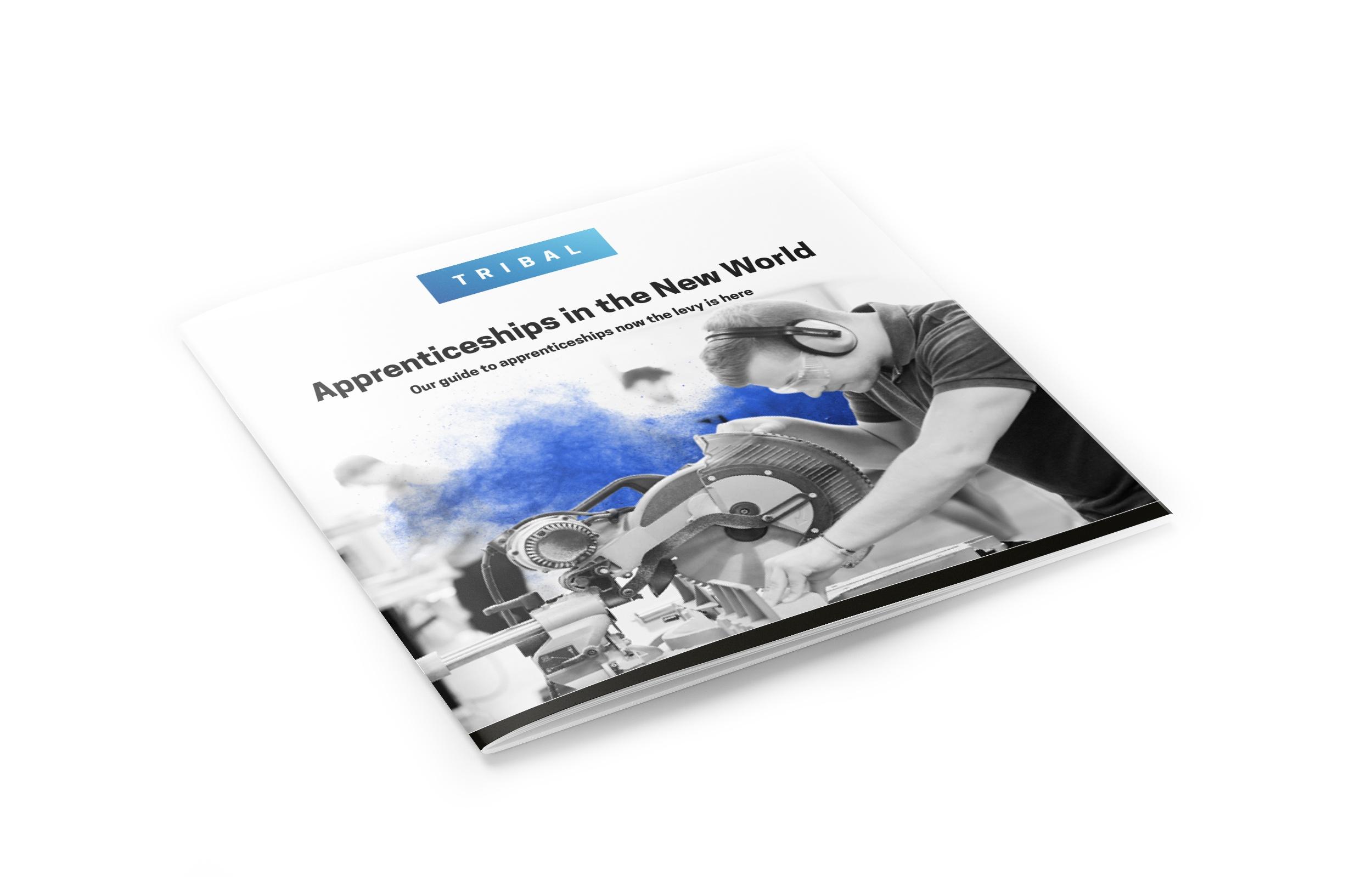 Square_Brochure_Mockup_Apprenticeship reformv3.jpg