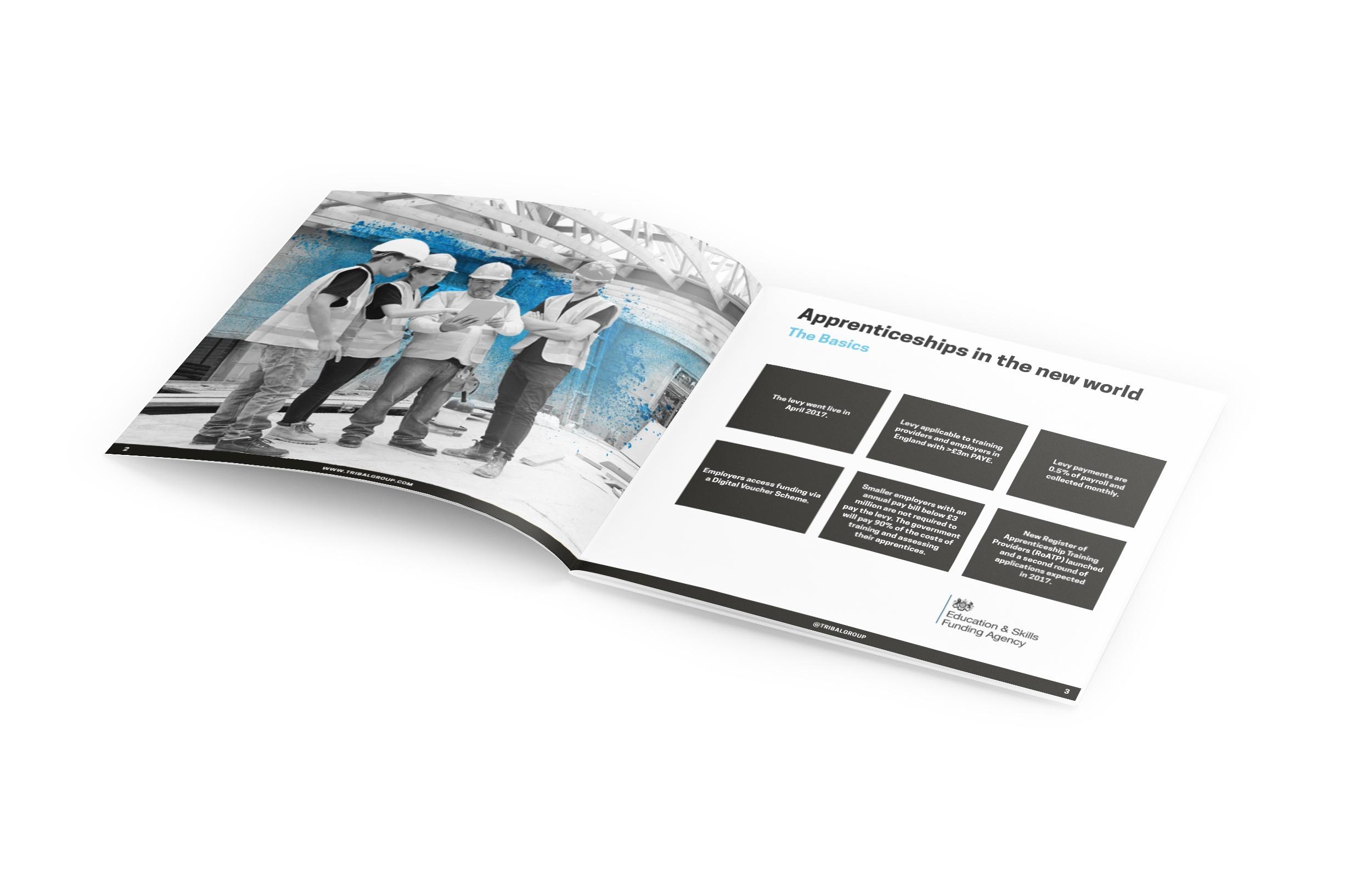 Square_Brochure_Mockup_reform spread.jpg